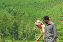 Exploring tea plantations in Munnar